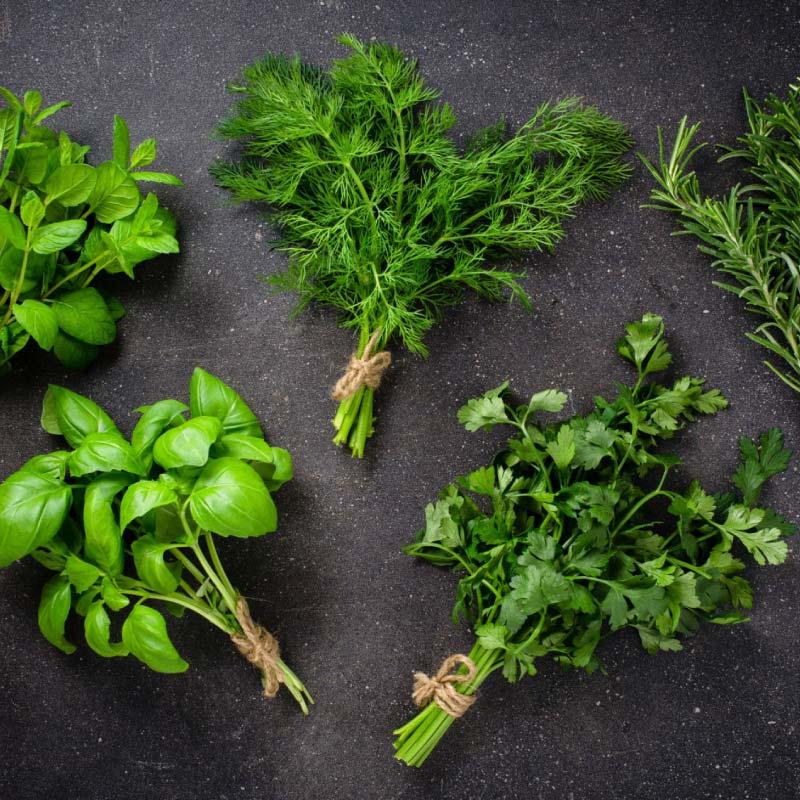 Alimentação saudável: Benefícios das ervas aromáticas